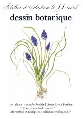 botanique 1.jpg