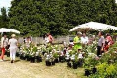 arboretum1.jpg